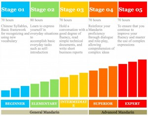 5 stage